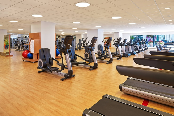Fitness center interior with an assortment of cardio equipment.